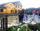 Hội An khẩn trương dọn dẹp sau mưa bão, chuẩn bị cho sự kiện APEC