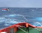 Điều 2 tàu cá Phú Yên đi cứu tàu Bình Định bị nạn trên biển