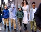 Angelina Jolie đưa con đi xem phim