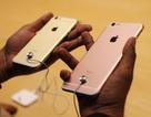 iPhone 6 Plus đang là sản phẩm bán tốt nhất tại Việt Nam