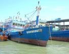 Ngư dân khốn đốn vì nhiều tàu vỏ thép vừa đóng đã hư hỏng
