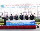 Chủ tịch nước bấm nút khởi động đồng hồ đếm ngược chào APEC 2017