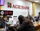 """Có một ngân hàng của """"nông dân"""" gần gũi và thân thiện"""