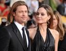 Không có chuyện Brad Pitt nói xấu Angelina Jolie!