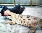 """""""Vua cá sấu"""" lý giải sự cố diễn viên xiếc bị cá sấu cắn"""