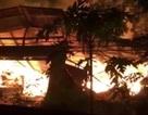 Lửa thiêu rụi công ty gỗ, thiệt hại hàng chục tỷ đồng