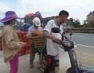 Người dân đổ xô đi mua ngói lợp nhà sau bão