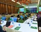 Hợp tác trong APEC về chủ đề phát triển cơ sở hạ tầng
