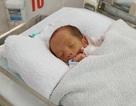 Hai bé trai sinh đôi bị mẹ đem cho ngay khi chào đời