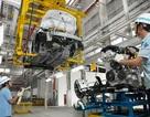 Vì sao chi phí sản xuất ô tô ở Việt Nam cao hơn Thái Lan 10-20%?