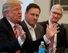Apple: Thuế biên giới ảnh hưởng xấu đến nền kinh tế Mỹ