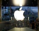 Làm sao để trở thành đại lý ủy quyền chính hãng của Apple?