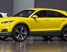 Audi chốt kế hoạch sản xuất xe Q4 và Q8