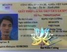 Đang bị truy nã vẫn được cấp bằng lái xe để hành nghề