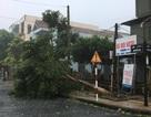 Bộ trưởng Bộ GD&ĐT gửi công điện tới các Sở, trường về chống bão số 10