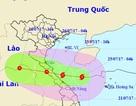 Chiều tối nay bão vào Hà Tĩnh - Quảng Trị, nhiều nơi mưa to