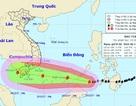 Đề nghị 19 tỉnh ven biển chủ động ứng phó cơn bão mạnh và phức tạp