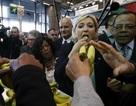 Ứng viên tổng thống Pháp xuống trang trại vận động tranh cử