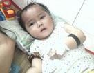 Cha mẹ nghèo cầu xin cứu đôi mắt của con gái nhỏ