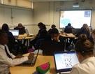 Bebras - hoạt động ngoại khóa về giáo dục công nghệ cho học sinh