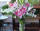 Bí quyết giữ hoa cắm tươi lâu trong những ngày Tết