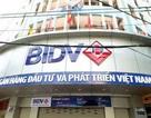 """Ông Trần Bắc Hà nói """"tôi bình thường"""", nhưng cổ phiếu BIDV vẫn giảm kịch sàn"""