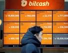 Sốc: Giá trị thực của bitcoin chỉ là con số 0 tròn trĩnh