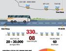 Infographic: BOT - Thiên la địa võng