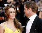 Brad Pitt và Angelina Jolie đã bí mật ký thỏa thuận chung