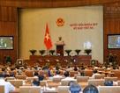 """Bộ trưởng Tài chính: Việt Nam miễn giảm thuế """"quá nhanh""""!"""