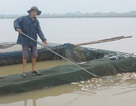 Thủy điện xả lũ làm chết cá: Một phần do dân chủ quan