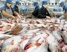 """1.000 doanh nghiệp thực phẩm """"rớt"""" khỏi danh sách xuất khẩu vào Mỹ"""