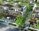 Thị trường BĐS: Sức hút của dự án biệt thự phố vườn LAVILA