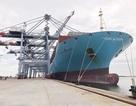 """""""Siêu tàu"""" container lớn nhất từ trước tới nay cập cảng biển Việt Nam"""