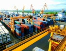 Bộ Tài chính trả lời về mức thu phí tại cảng biển Hải Phòng