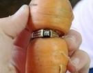 Tìm thấy nhẫn kim cương trên củ cà rốt sau 13 năm thất lạc