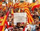 Tây Ban Nha tính tịch thu toàn bộ nguồn thuế của Catalonia