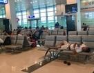 Chuyến bay chậm 3 tiếng phải phục vụ ăn, 6 tiếng phải bố trí chỗ ngủ