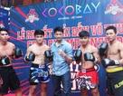 Đà Nẵng: Ra mắt giải đấu võ thuật Coco Championship