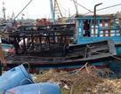 Ba tàu cá cháy rụi khi đang neo đậu