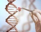 Đột phá y học giúp loại bỏ virus HIV chữa trị căn bệnh thế kỷ