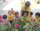 Cô giáo mầm non chia sẻ cách vượt qua rào cản ngôn ngữ với học sinh Raglai