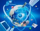 Thực hiện quản lý giáo dục đào tạo trên môi trường mạng