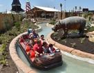 Cha dành 51 triệu USD xây công viên giải trí riêng cho con gái