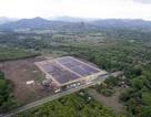Công viên năng lượng mặt trời cung cấp điện cho 2.100 hộ dân đi vào hoạt động