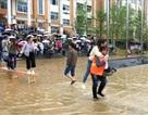 Dư luận dậy sóng với hình ảnh sinh viên được cõng qua cổng trường ngập nước