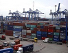 """Vụ 213 container """"mất tích"""": Có thể xử lý cả người đứng đầu đơn vị hải quan"""