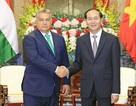 Hungary cam kết thông qua Hiệp định Thương mại tự do Việt Nam - EU