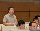 """Đại biểu Quốc hội """"phê"""" Thanh tra Chính phủ trong vụ Đồng Tâm"""
