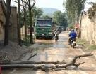Bức xúc vì ô nhiễm, dân lấy thân cây chặn xe chở đất